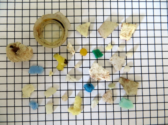 Shearwater plastics 4..jpg